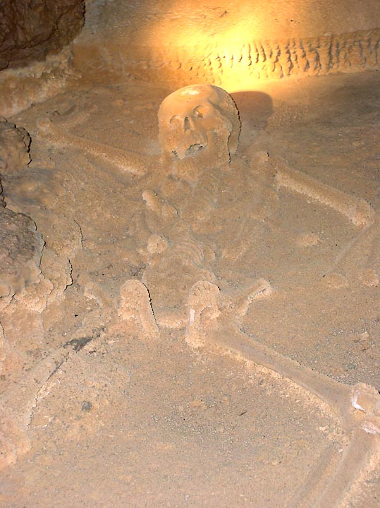 The Crystal Skeleton of Actun Tunichil Muknal