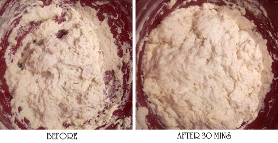 Homemade English Muffin Batter